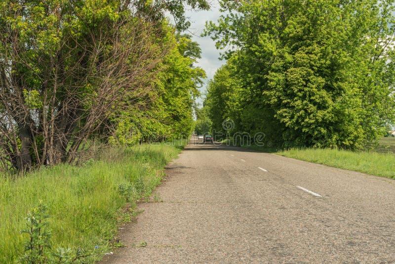 Fragment d'une route rurale image libre de droits