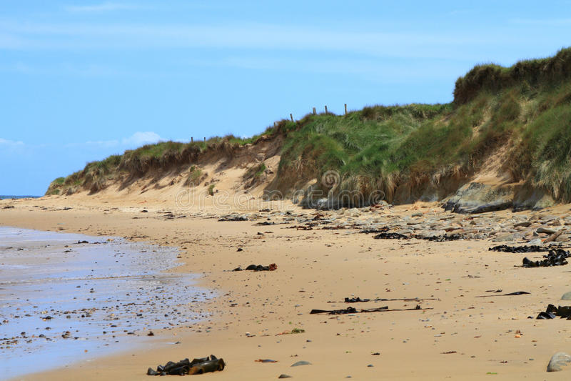 Fragment de plage photographie stock libre de droits