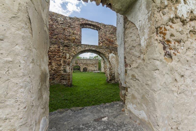 Fragment de vieilles ruines en pierre envahies avec des usines photo stock