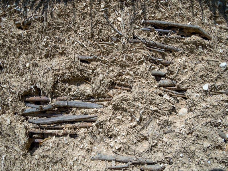 Fragment der Wand, gemacht von den hölzernen Niederlassungen mit tönernem Gips stockfotografie
