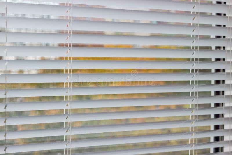Fragment der weißen Jalousien auf einem Fenster stockfoto