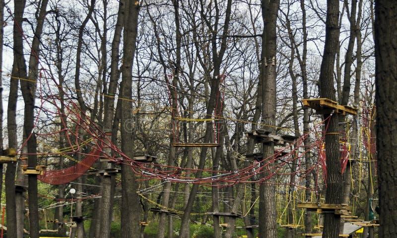 Fragment des équipements de sports de corde au parc d'aventure image stock
