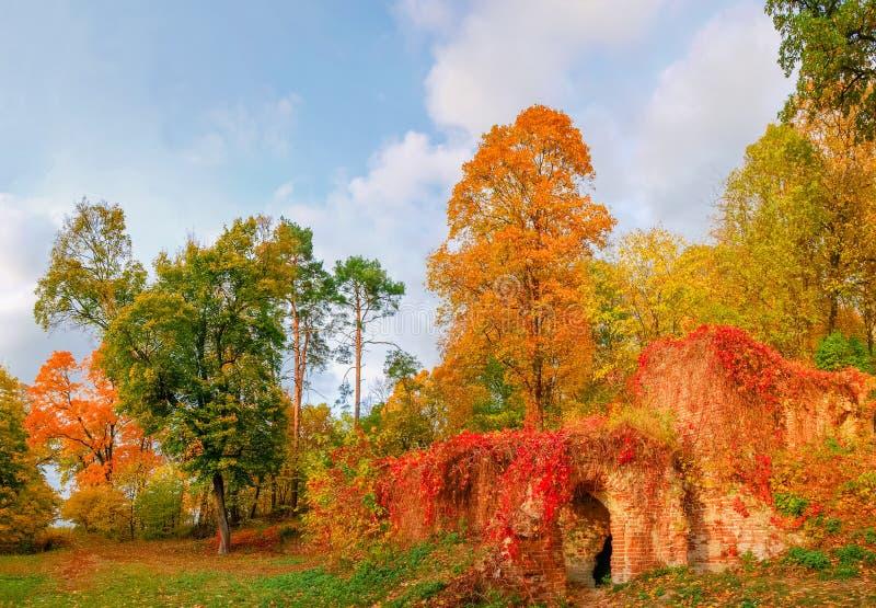 Fragment du parc d'automne avec des ruines décoratives dans le premier plan photo stock