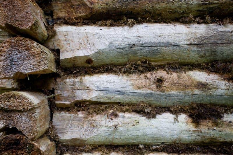 Fragment du vieux mur de la maison du bois de construction photographie stock libre de droits