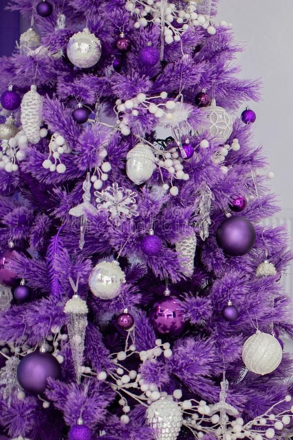 Fragment of a purple Christmas tree decorated with balls. Christmas and New Year holidays.  stock photos