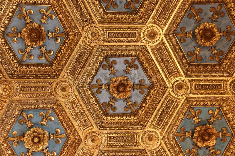 Fragment of the renaissance carved ceiling in the Sala dei Gigli in the Palazzo Vecchio, Florence, Tuscany, Italy. royalty free stock photos