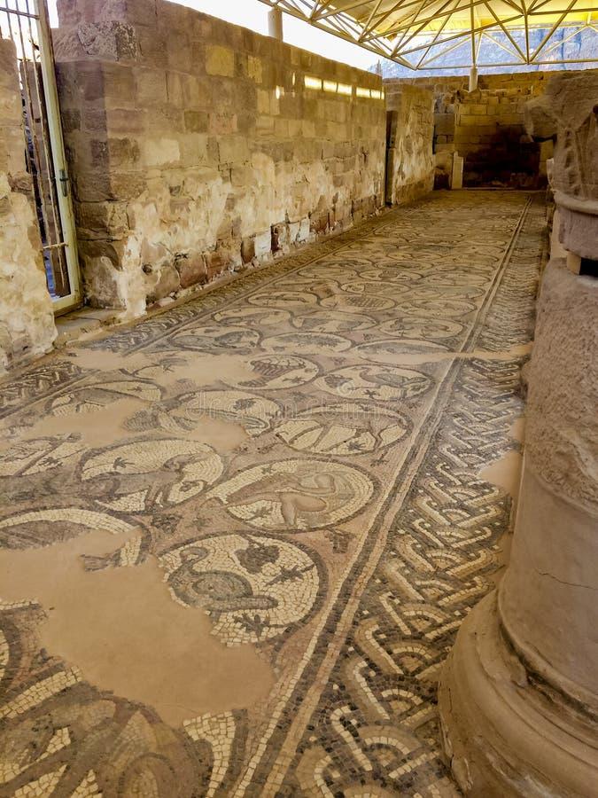 Fragment Roman Mosaics Ruins an der alten byzantinischen Kirche in der verlorenen Stadt von PETRA lizenzfreie stockfotografie