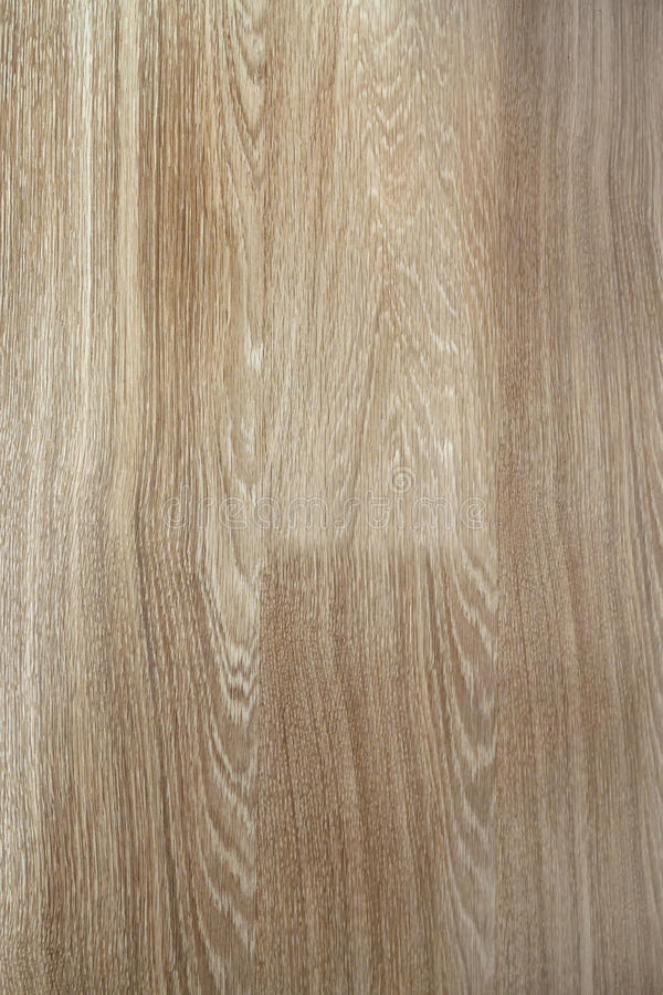Fragment of seamless wooden oak panel laminate parquet floor tex royalty free stock photography