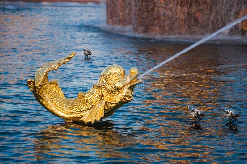 Fragment van de fontein ?Vriendschap van volkeren met lichten bij VDNH Gouden vissen stock afbeeldingen