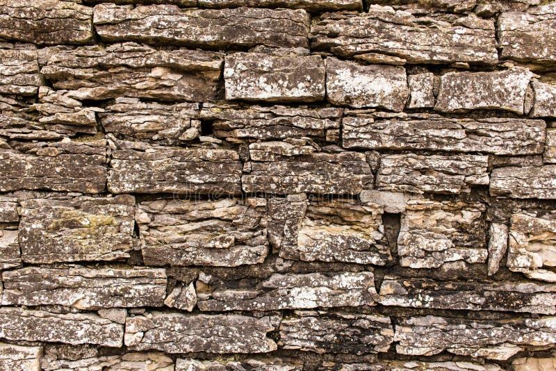 Fragment van de muur van de steenvesting stock afbeeldingen