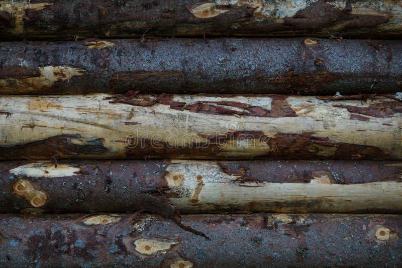 Fragment van een oude logboekmuur van ruwe logboeken Textuur stock foto