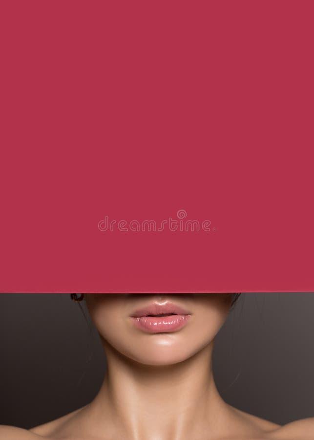 Fragment van vrouwelijke lippen Het Gezicht van de schoonheid stock foto's