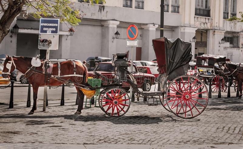 Fragment of view of beautiful vintage retro horse drawn carriage on city background royalty free stock photography
