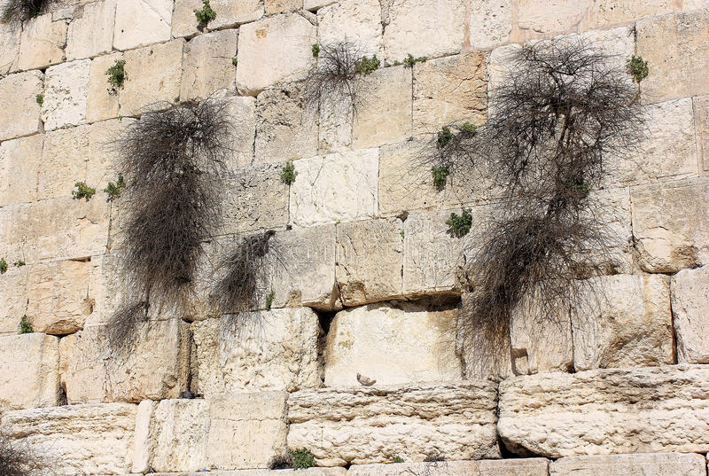 Download Fragment Of The Wailing Wall In Jerusalem Stock Image - Image of jewish, middle: 37114791