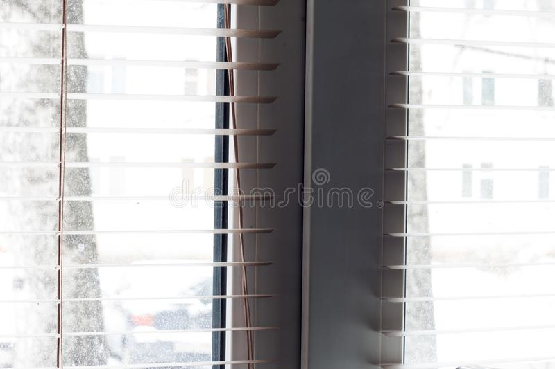 Fragment of the white Venetian blinds with lift cord and turning rod of a manual control on a foreground . stock photography