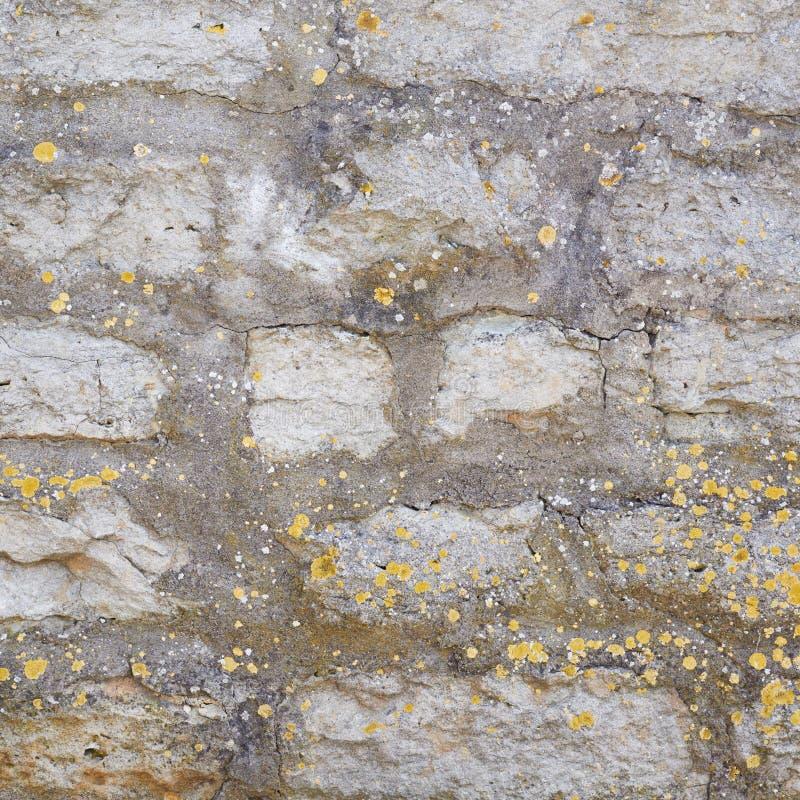 Fragmento da parede do castelo velho do tijolo imagens de stock