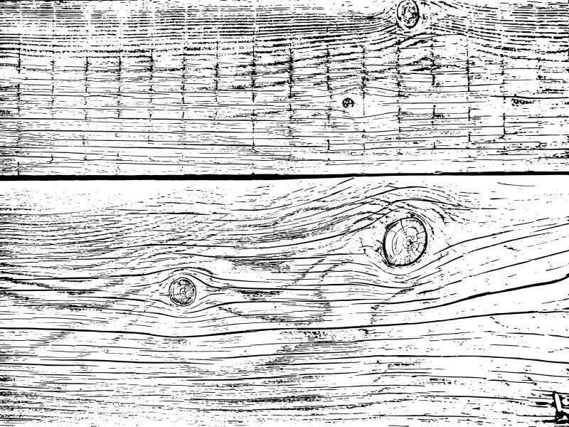 Fragmento de un árbol viejo con un nudo ilustración del vector
