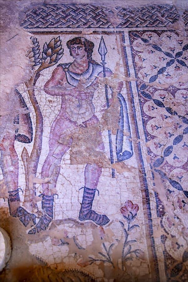 Fragmento de un mosaico antiguo del piso en el parque nacional de Zippori, Israel foto de archivo libre de regalías