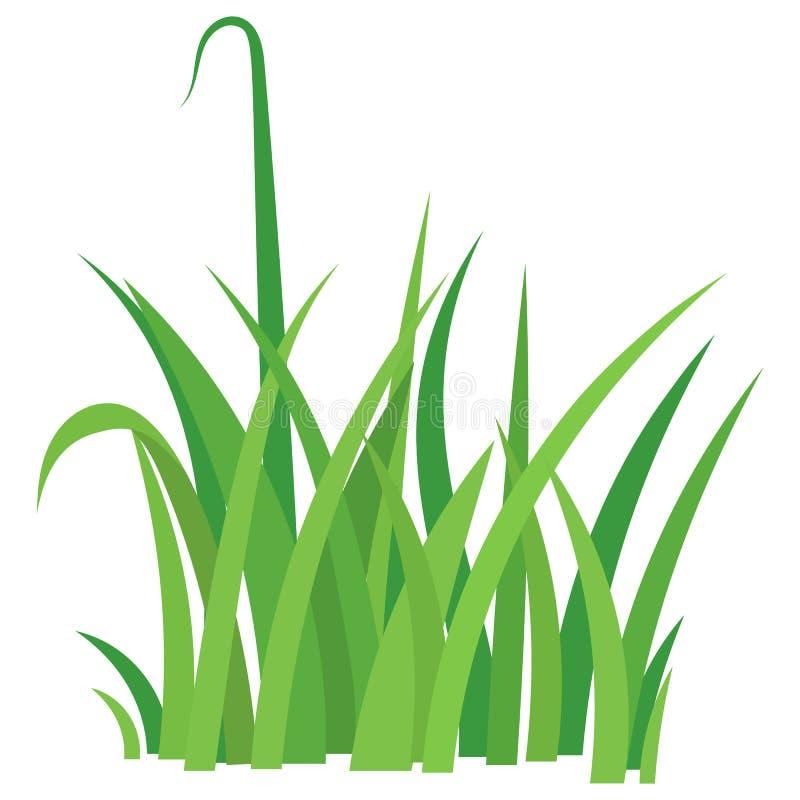 Fragmento de una hierba verde stock de ilustración