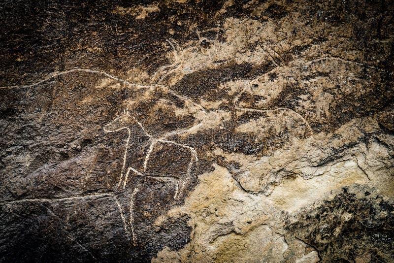 Fragmento del petroglifo en Gobustan, foto de archivo libre de regalías