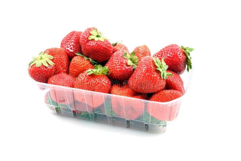 Download Fragole fotografia stock. Immagine di frutte, saporito - 3143640