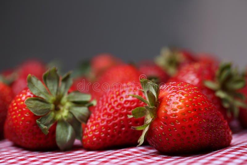 Fragole fresche che si siedono sulla tovaglia rossa del percalle immagini stock libere da diritti