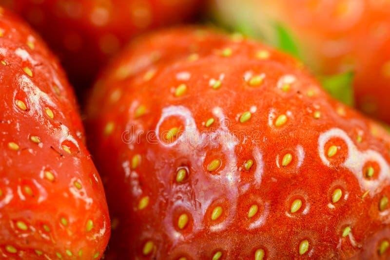 Fragole rosse fresche nel mercato di frutta fotografia stock libera da diritti