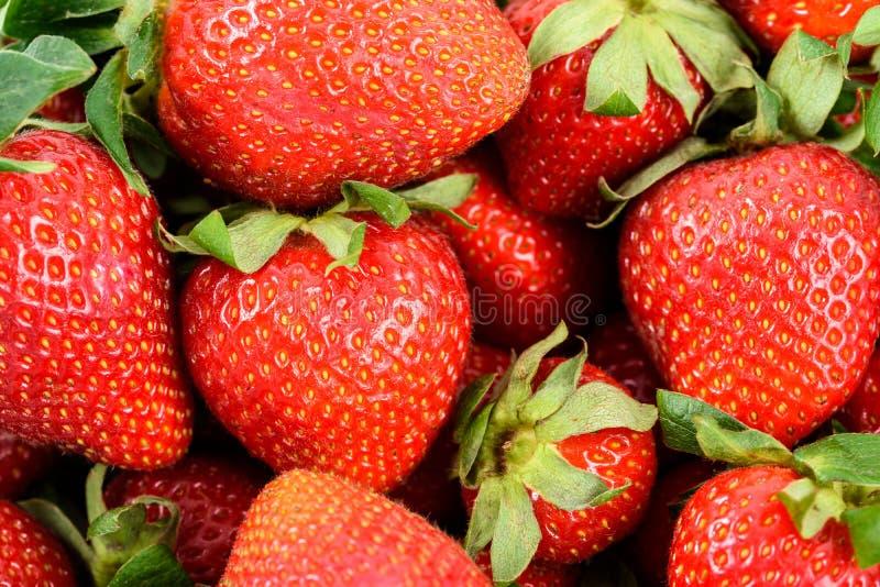 Fragole rosse fresche nel mercato di frutta fotografia stock