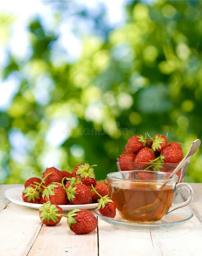 Fragole su un piatto e su una tazza di tè su fondo verde immagine stock libera da diritti