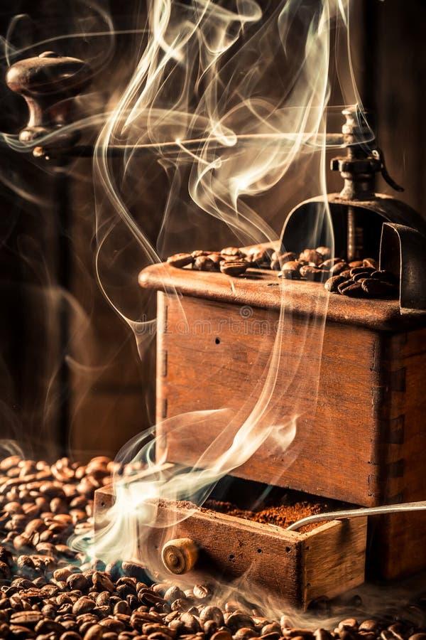 Fragrance of fresh coffee seeds stock image