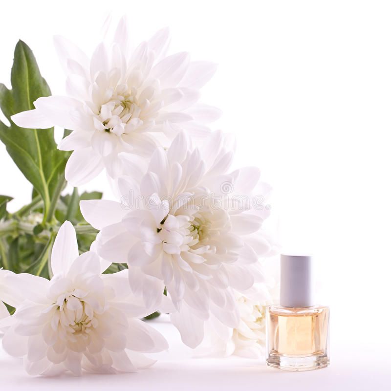 Download Fragrance oil stock photo. Image of well, fragrance, wellness - 18812584