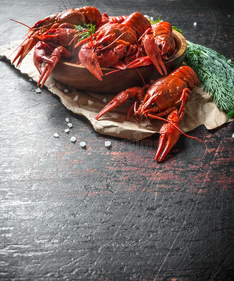 Fragrant boiled crayfish on paper with a bunch of dill stock photography