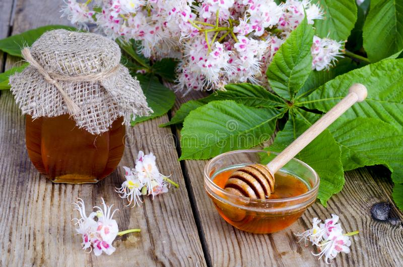 Fragrant chestnut honey in jar with blossom flowers. royalty free stock photography