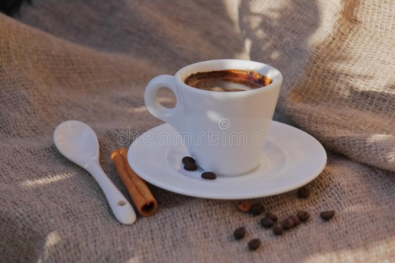 Fragrant coffee in the morning sun royalty free stock image
