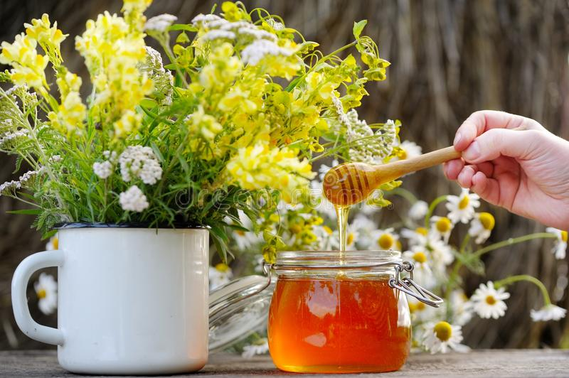 Fragrant, fresh, golden honey in a glass jar. Human hand with a special spoon pours honey into the jar. Nearby are the flowers of the field, standing in a royalty free stock images
