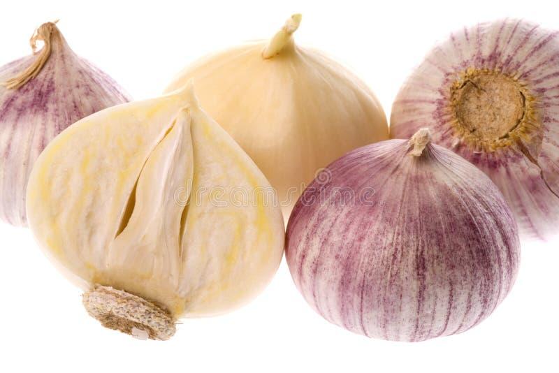 Fragrant Garlic. Isolated macro image of fragrant garlic royalty free stock image