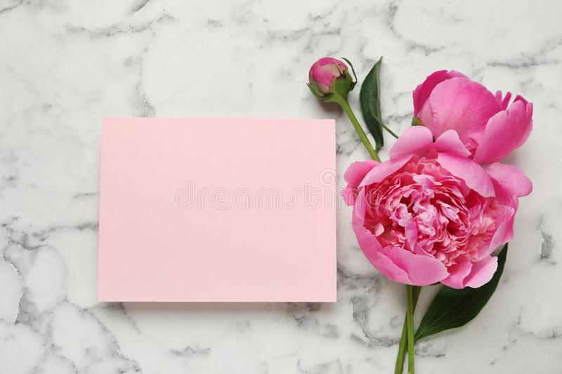 Fragrant peonies and blank card on marble table, top view. Beautiful spring flowers royalty free stock photography