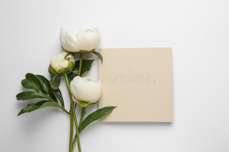 Fragrant peonies and blank card on white background, top view. Beautiful spring flowers stock photo