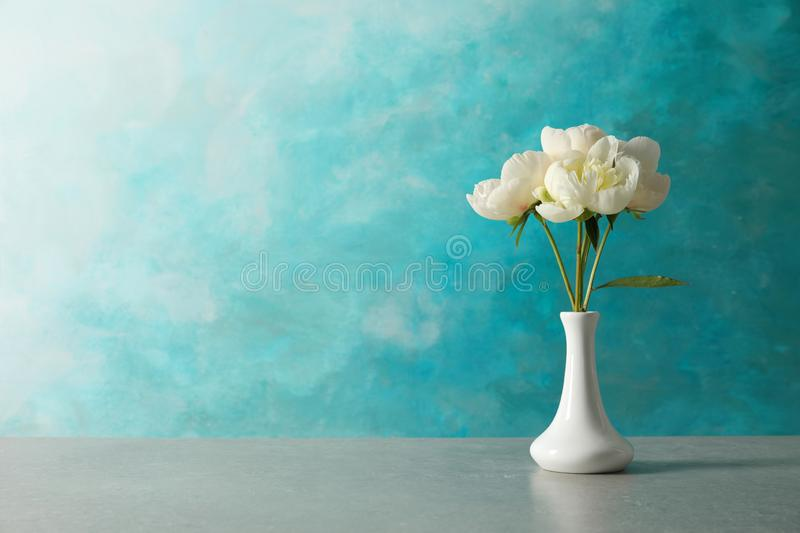Fragrant peonies in vase on table against color background. Beautiful spring flowers stock image