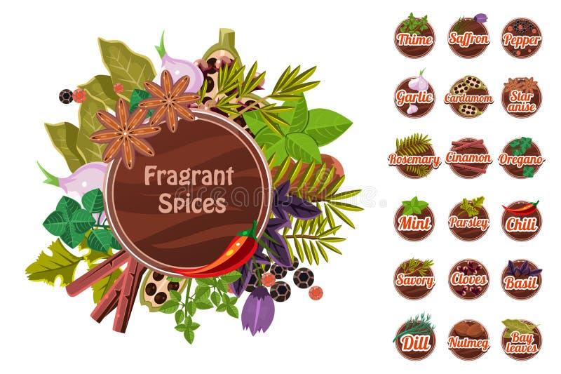 Fragrant pikantność ustawiać, macierzanka, szafran, pieprz, czosnek kardamon, gwiazdowy anyż, rozmaryn, cynamon, oregano, mennica ilustracji