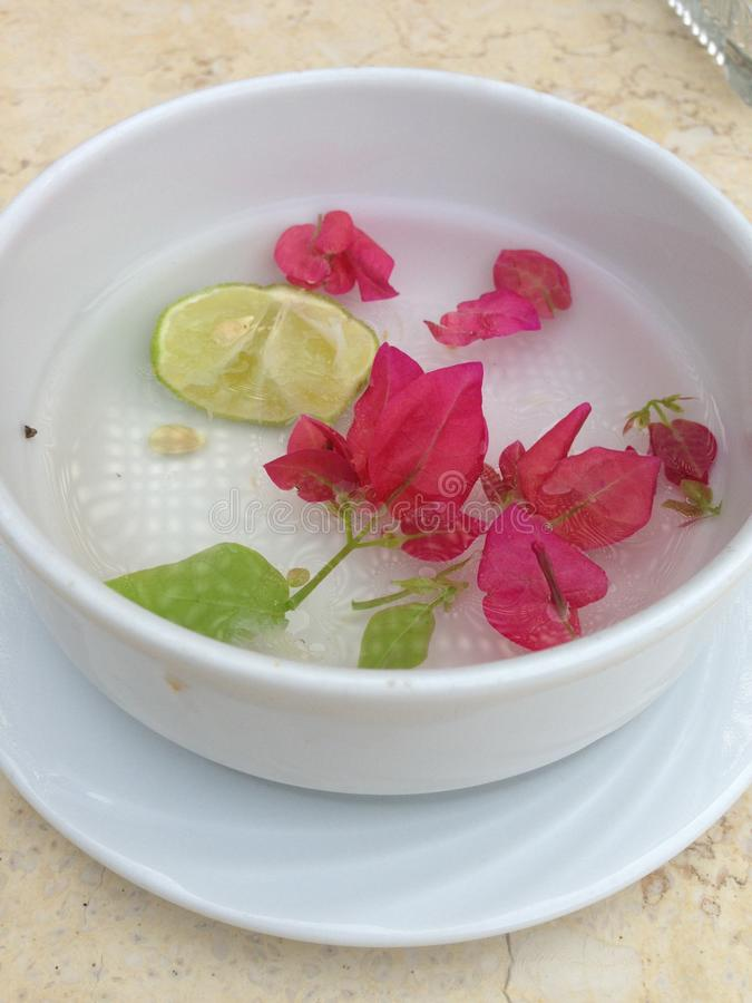 Fragrant saucer royalty free stock images