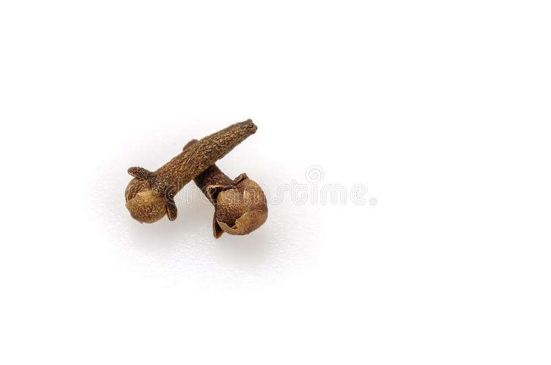 Fragrant spice cloves on a white background. Cloves are dried unopened buds of cloves. Close-up, isolated. Fragrant spices royalty free stock images