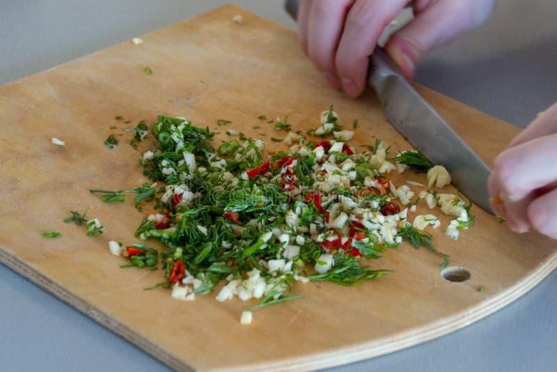 Frais coupé par le couteau en épices femelles de mains avec l'ail, poivrons de piments rouges, fenouil vert image stock