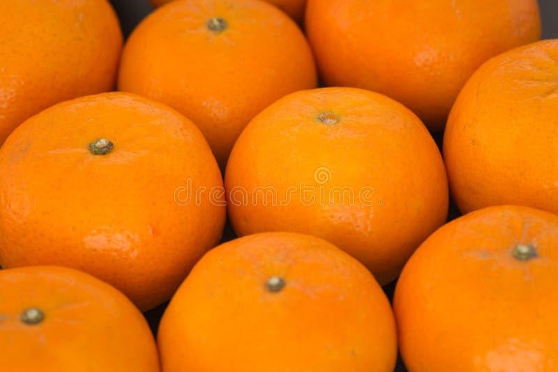 Frais et juteux, mandarines images libres de droits