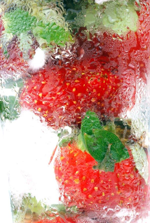 Download Fraise photo stock. Image du nature, image, vert, juteux - 8658584