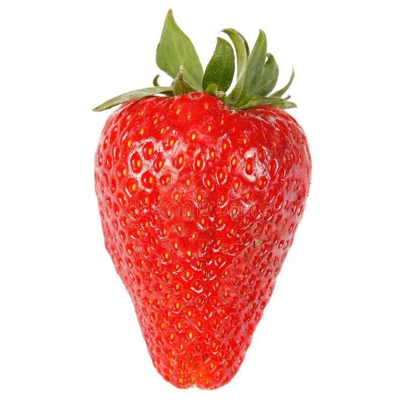 fraise d'éclaboussure photographie stock libre de droits