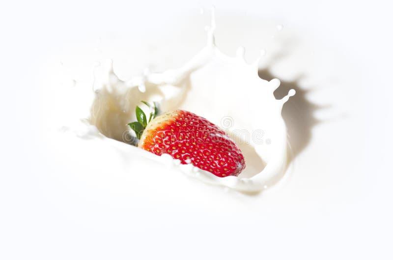 Fraise dans une crème image stock