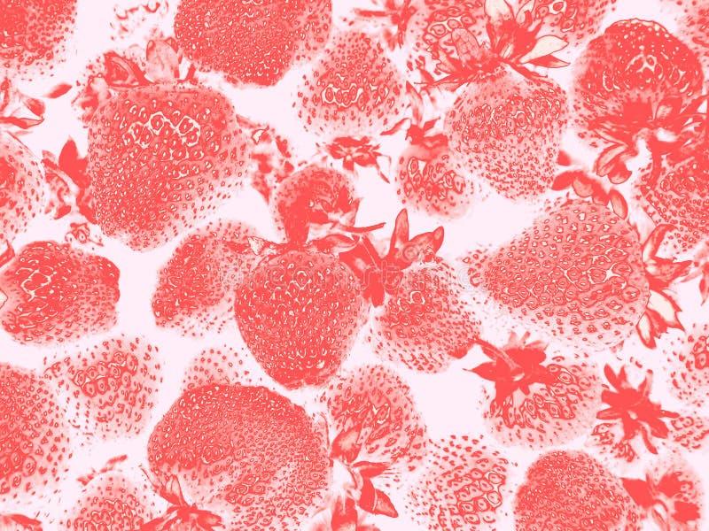 Fraise sur le fond blanc ou rose-clair, modèle abstrait photo libre de droits