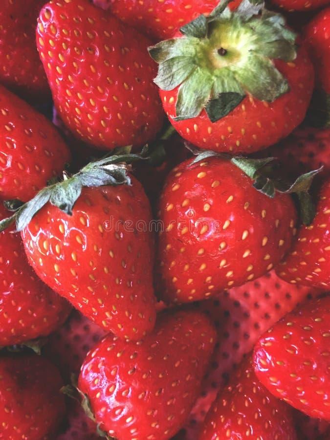 fraises, disposition de fruit dans un ordre flou, dans un conteneur avec un fond rouge photos stock