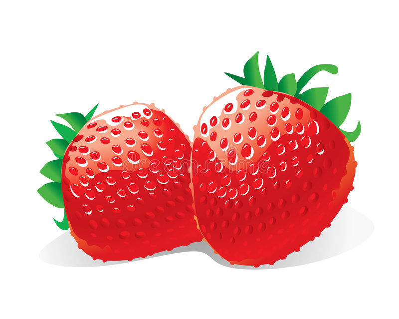 Fraises (illustration) illustration libre de droits
